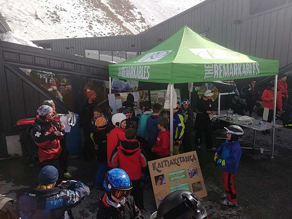 NZSki celebrates the return of kea to The Remarkables