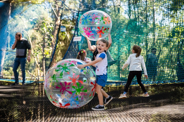 TreeTops opens aerial fusion of play and adventure in Ourimbah State Forest