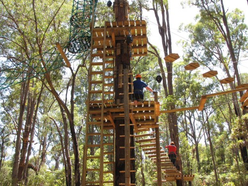 New treetop challenge opens 100 kilometres south of Perth