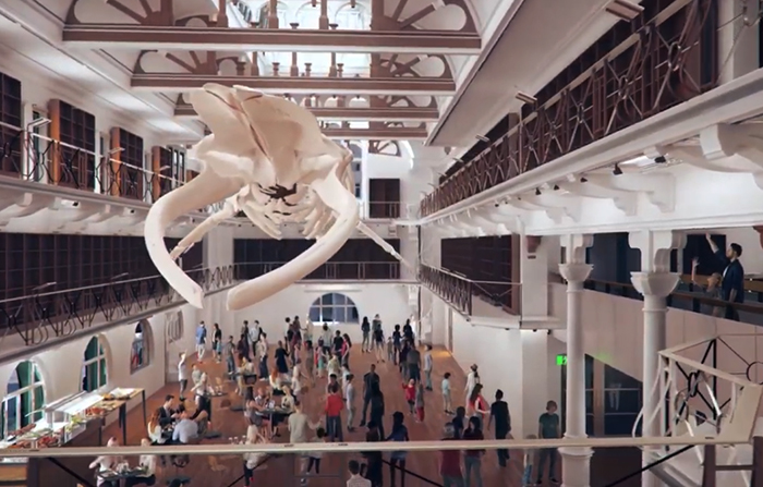 New WA Museum revealed in video animation