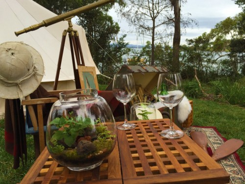 Wingtons introduces 'glamping' to Tasmania