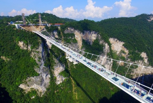World's highest and longest glass bridge opens in Central China