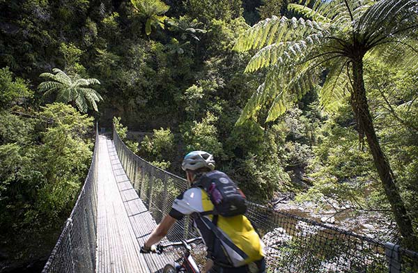 Bay of Plenty trail reopens ahead of summer peak season