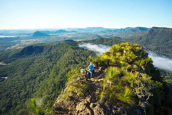 Ecotourism Australia partners with WWF Australia to support bushfire-affected tourism destinations