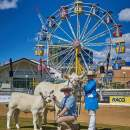 New experiences at 2018 Ekka