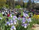 Tasmanian Government acknowledges Royal Tasmanian Botanical Gardens' volunteers