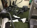 Study finds dirty gyms turn away members