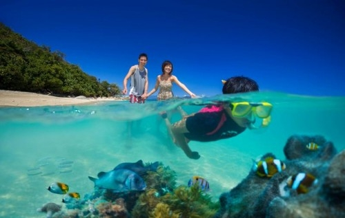 Great Barrier Reef Tourism Operators Call For Action To