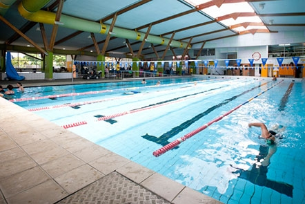 belgravia leisure expands in new zealand with auckland council pool contracts australasian