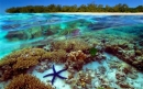 Great Barrier Reef and tourism at issue in the Queensland election