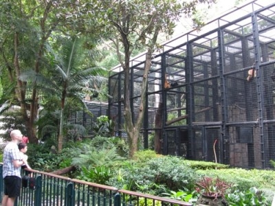 Panel Urges Major Revamp Of Hong Kong Zoological And Botanical Gardens Australasian Leisure