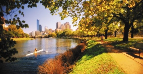 Melbourne s urban forest strategy the most compelling for Cheap landscaping adelaide
