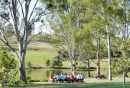 More visitors to NSW's botanic gardens than ever before