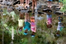 Nature Play Queensland launches summer-themed activities