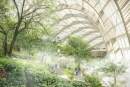 Oman Botanic Garden to become the world's largest ecological oasis