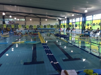 Paul Sadler Swimland Forced To Take Action On Staff Underpayments Australasian Leisure Management