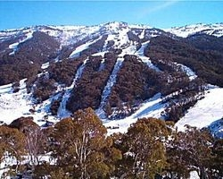 The Mountain Collective announces Thredbo as first international partner resort
