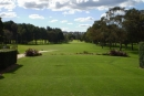 Northern Beaches Council considers sacrificing golf courses for sports fields